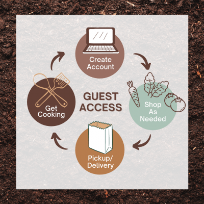 GuestAccessInfographic