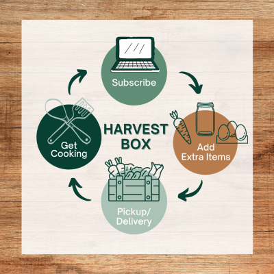 HarvestBoxInfographic